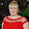 'Bridesmaids' scene-stealer Rebel Wilson joins 'What To Expect When You're Expecting'